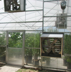 Greenhouse Ventilation Fans Fan Ventilation